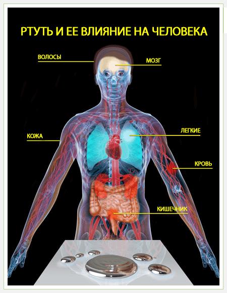 При попадании ртути на кожу